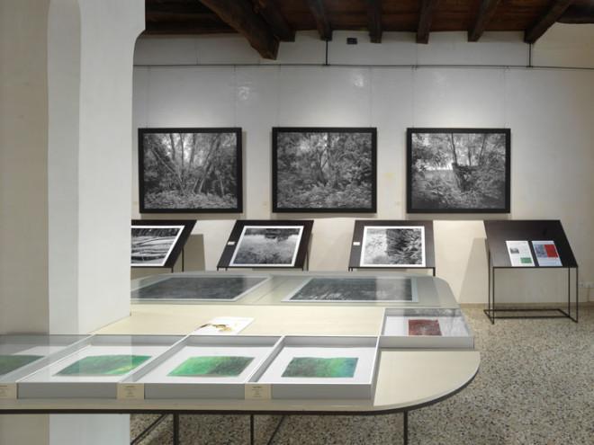 09-Foto-mostra-Dall'Arche---Stpjnic_0042